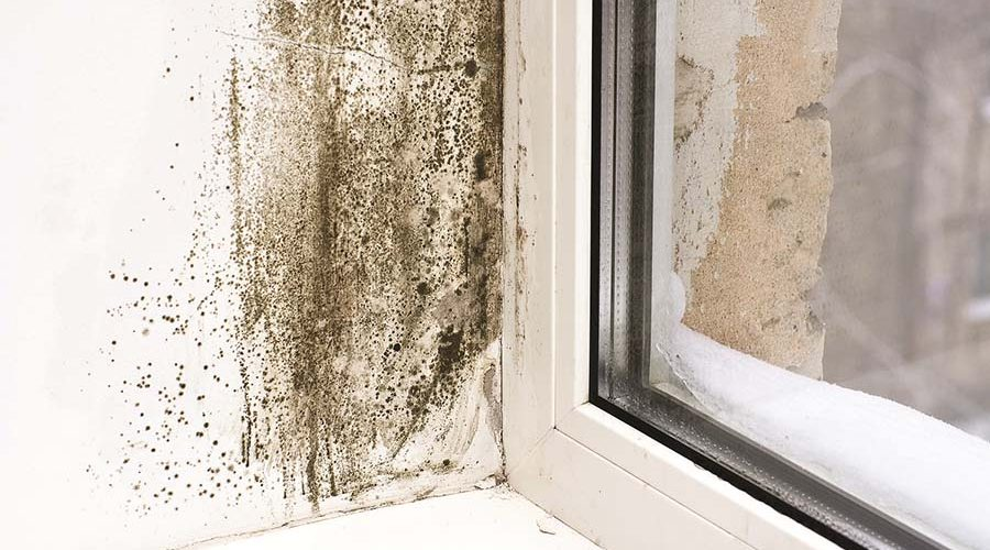 A Perfect Storm for Condensation in Social Housing