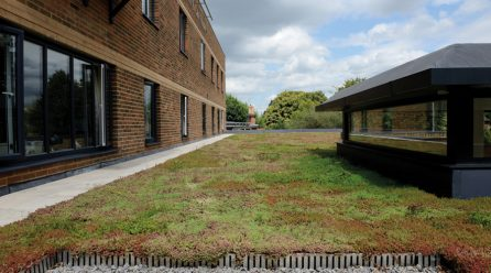Green Roofs: Fire Performance, Maintenance and Substrate Science